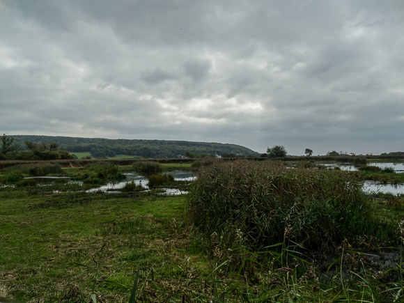 Leighton Moss on 19 September 2014